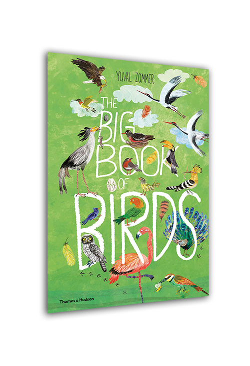 The Big Book of Bird...